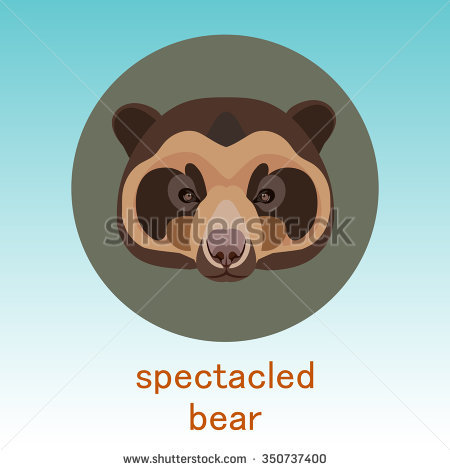 Kodiak brown bear. Face flat icon design. Animal icons series.