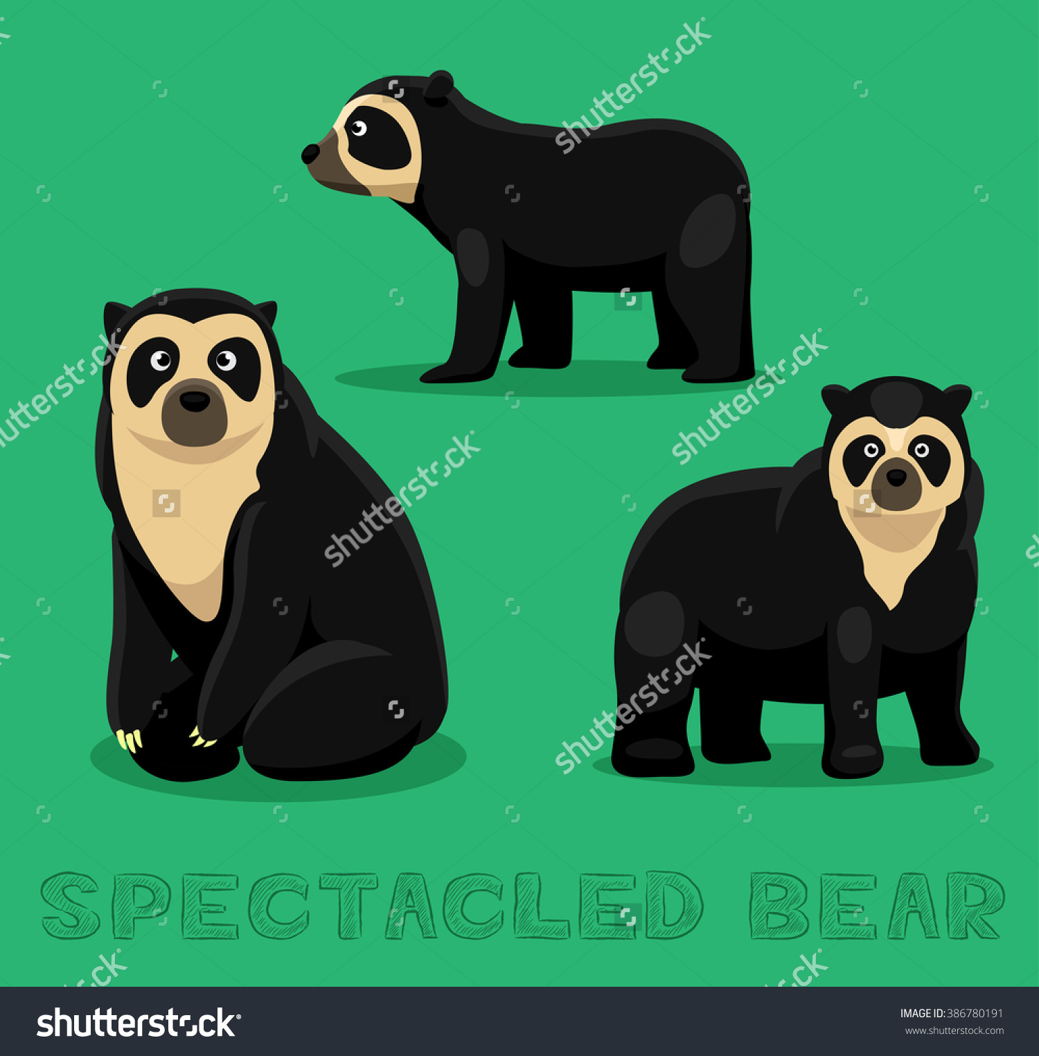 Bear Spectacled Bear Cartoon Vector Illustration Stock Vector.