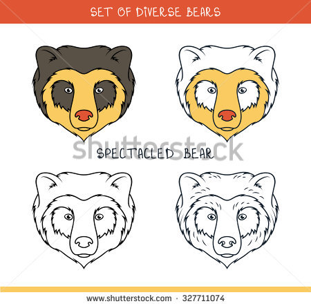 Spectacled Bear. Set Isolated Heads Of Bear In Color, Lines. Heads.