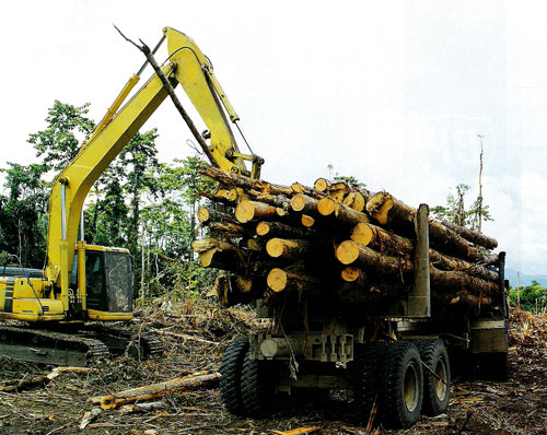 PAPUA NEW GUINEA FOREST INDUSTRIES ASSOCIATION (Inc).