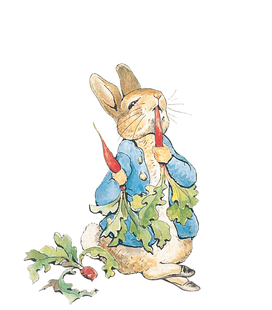 Beatrix Potter Fortnight at Speke Hall in Liverpool.