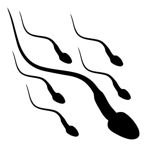 Semen Clip Art.