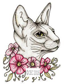 Sphynx Cat Clipart stray 5.