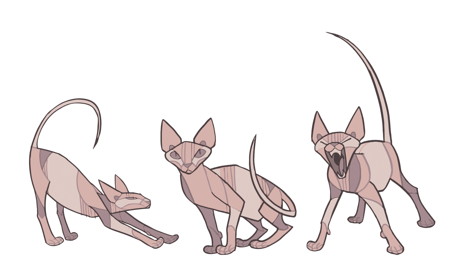 Sphynx cat Donskoy cat Kitten How to Draw Animals Drawing.