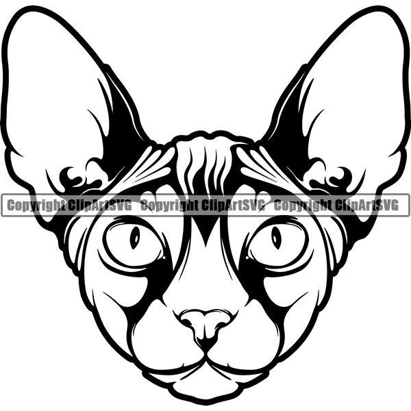 Sphynx Cat Breed Head Face ClipArt SVG.
