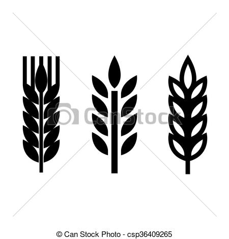 Clip Art Vector of Vector black wheat ear spica icons set on white.