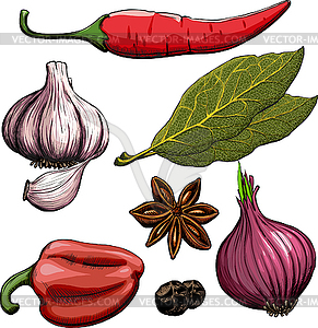 Spice 20clipart.