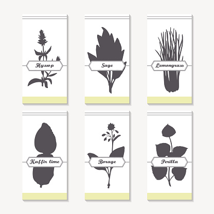 Hyssop Clip Art, Vector Images & Illustrations.