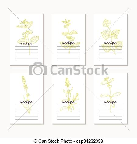 Vectors of Recipe cards collection with hand drawn spicy herbs.