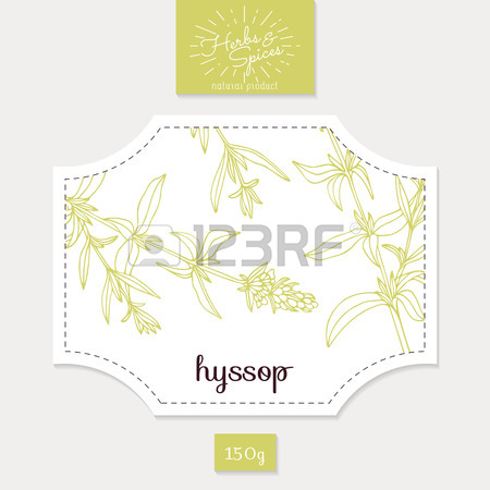 Product Sticker With Hyssop Leaves. Spicy Herbs Packaging Design.