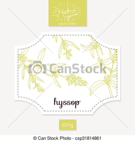 Clip Art Vector of Product sticker with hand drawn hyssop leaves.