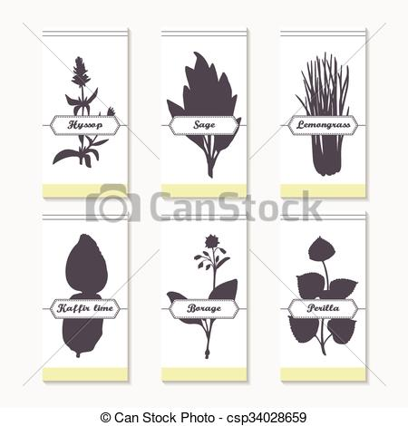 Clipart Vector of Spicy herbs silhouettes collection. Hand drawn.