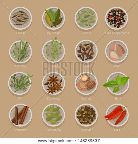 or seasoning on plates like seeds, roots, leaf, herb for flavour.