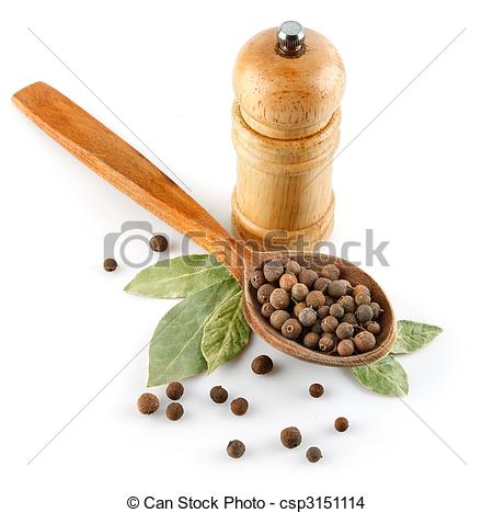 Stock Photo of spices in wooden spoon with laurel leaves isolated.