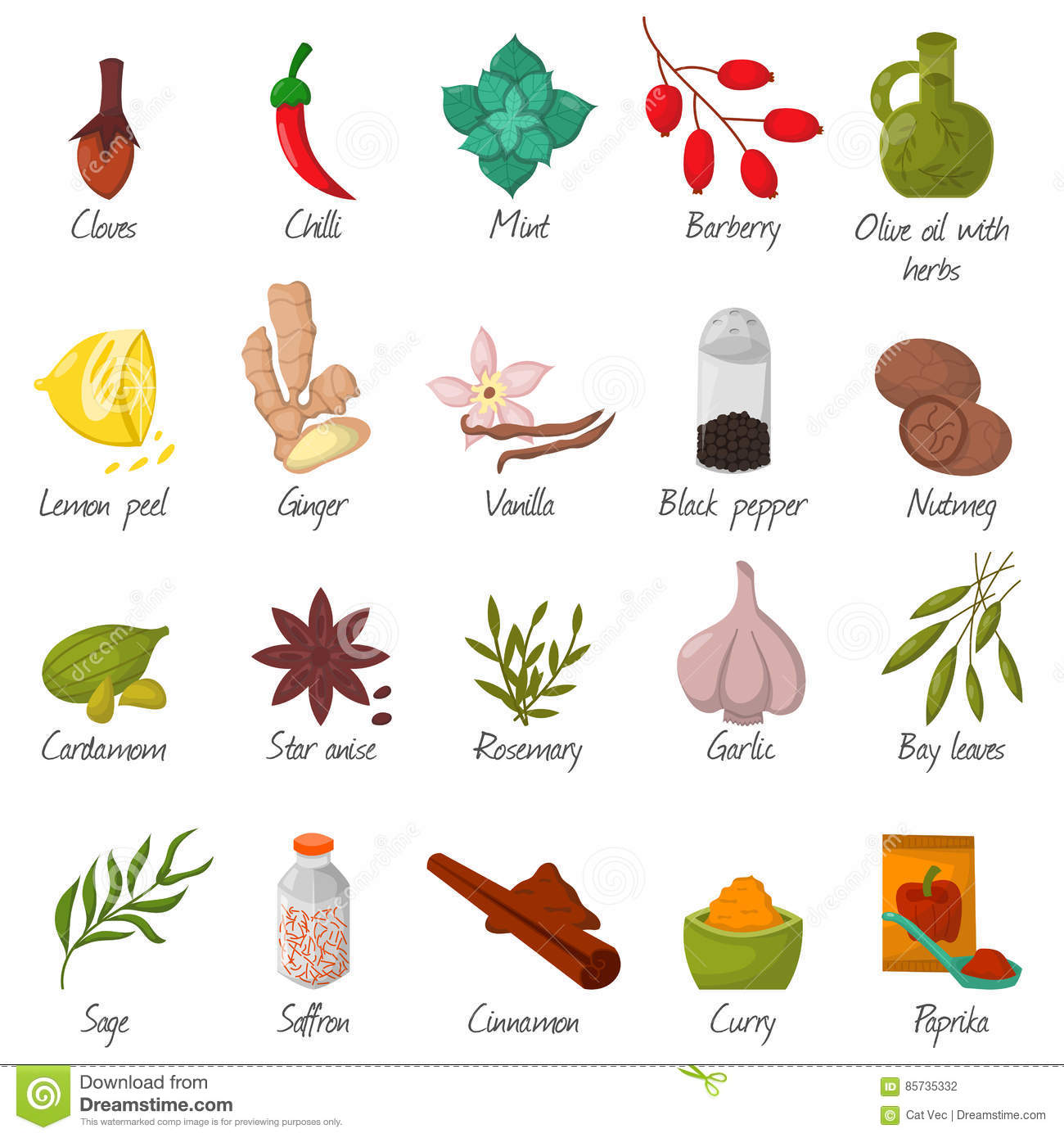 Spices, Condiments And Seasoning Food Herbs Decorative Elements.
