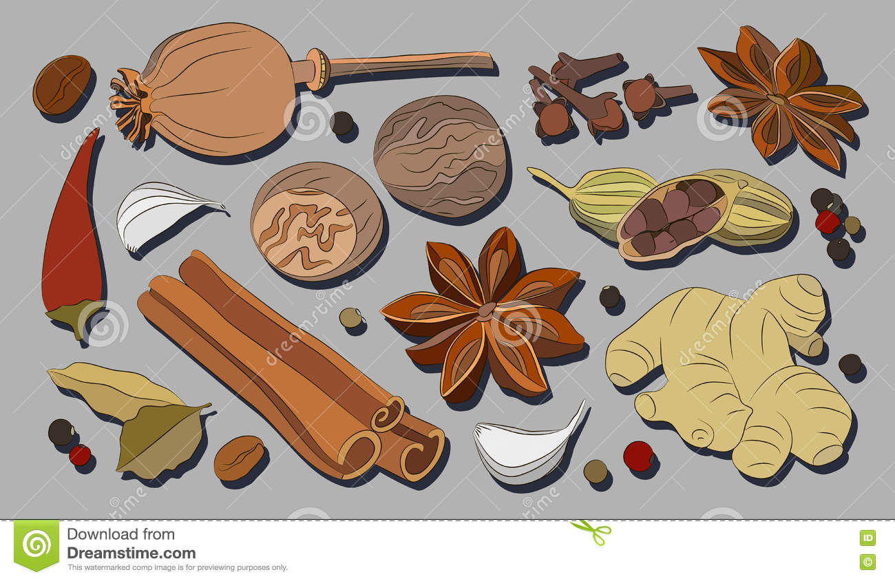 Spices, Condiments And Herbs Decorative Elements Stock Vector.