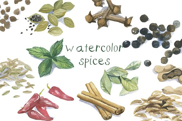 Watercolor Spices Clip Art ~ Graphics on Creative Market.