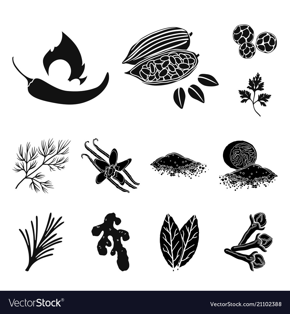 Herb and spices black icons in set collection for.