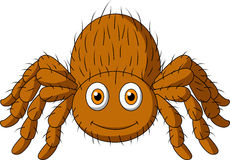 Orange Spider Clipart.