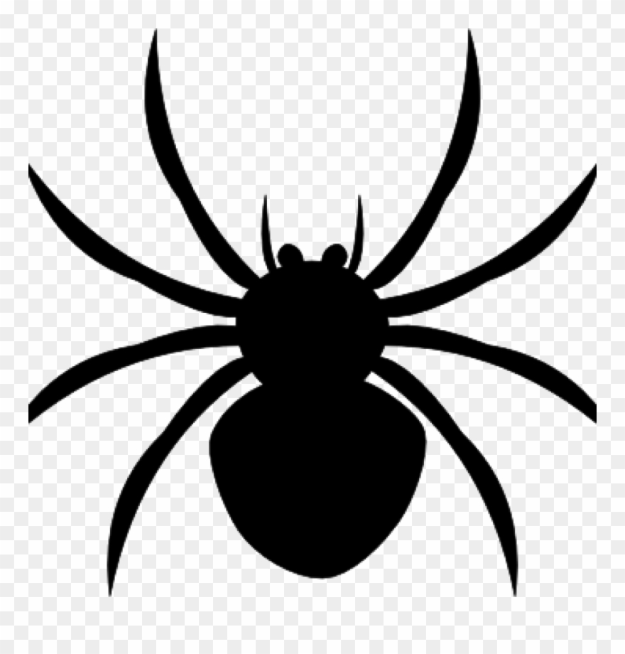 Spider Clipart Black And White Arachnophobia Overcoming.