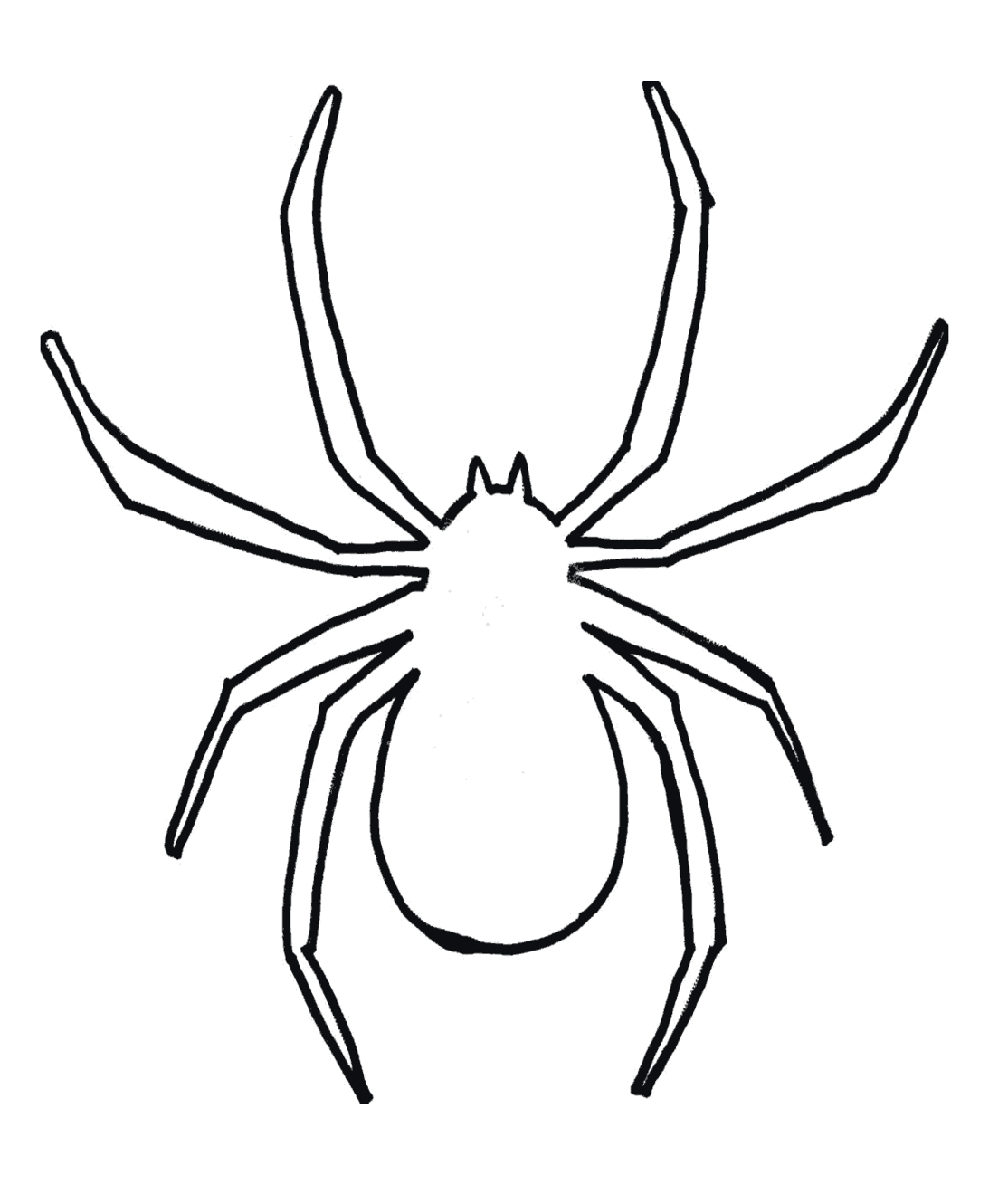 Spider clipart black and white New Spider clipart drawn.