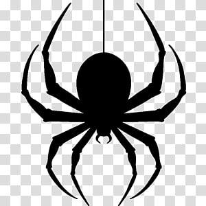 Spider clipart transparent background, Spider transparent.