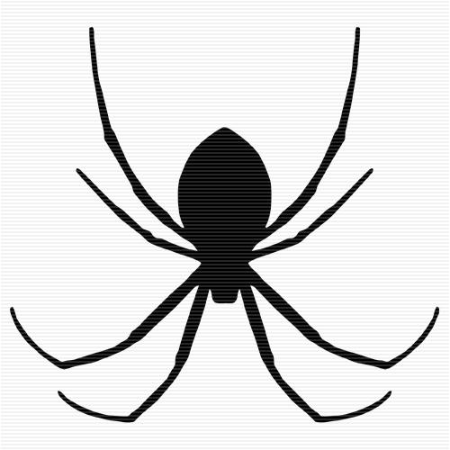 Free Transparent Spider Cliparts, Download Free Clip Art.