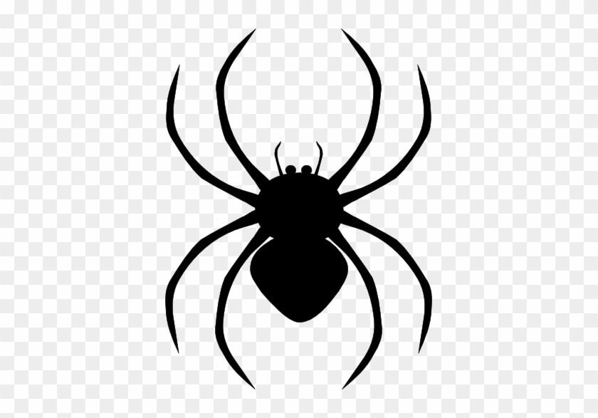 Spider clipart png 4 » Clipart Portal.