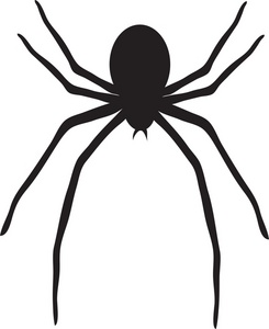 Spider clip art with transparent background free.