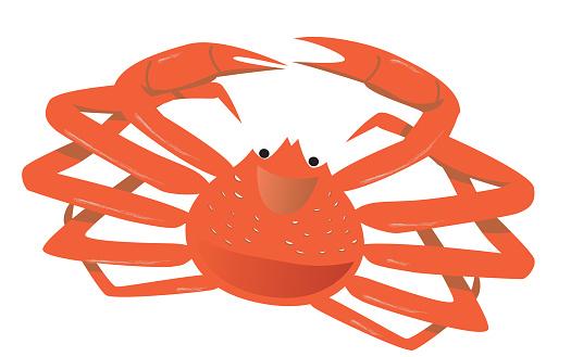 Spider Crab Clip Art, Vector Images & Illustrations.