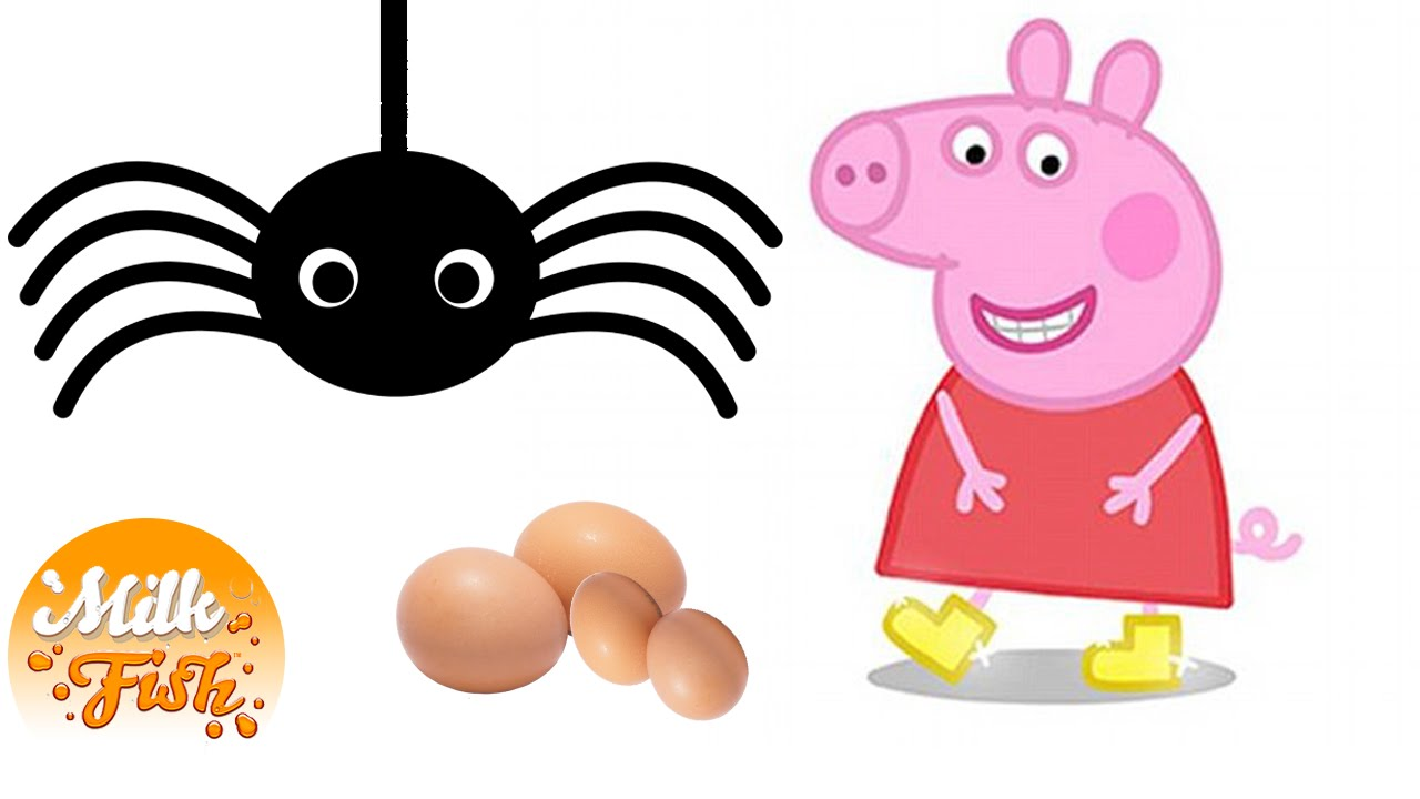 Peppa Pig and Spider Eggs (child friendly!) YTP Juniors.