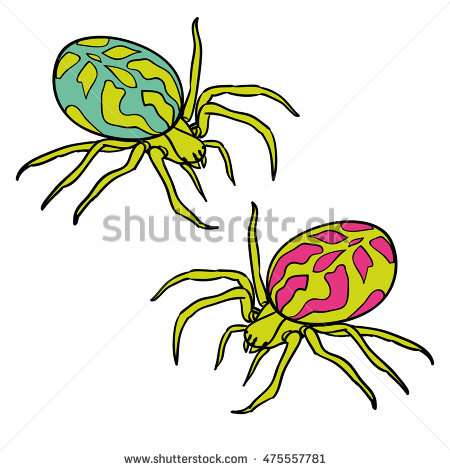 Spider Caution Stock Photos, Royalty.