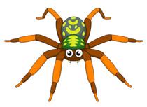 Free Spider Clipart.