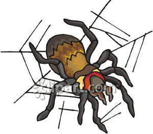 Garden_Spider_In_Its_Web_Royalty_Free_Clipart_Picture_090418.