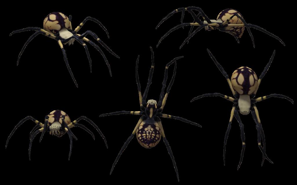 Black Widow Spider Art.