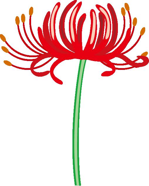 秋の花2.
