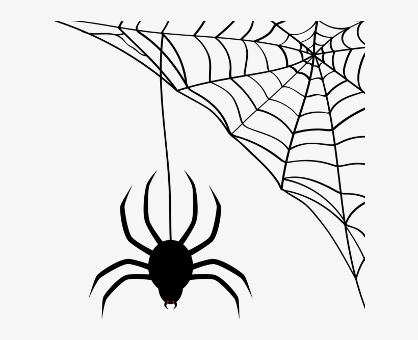 Download Spider Web Transparent Clipart Spider.