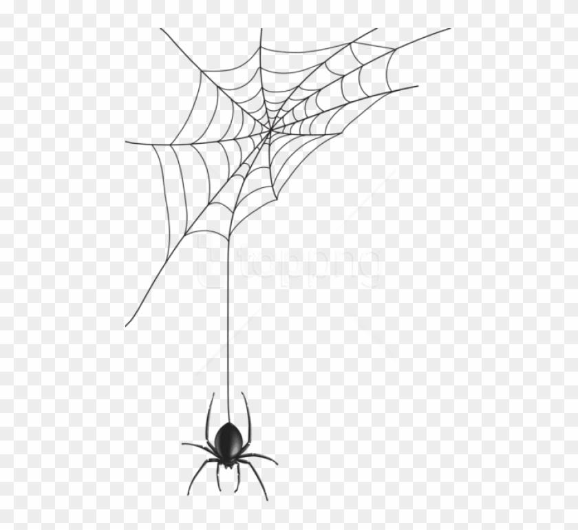 Spider Man Web Png.