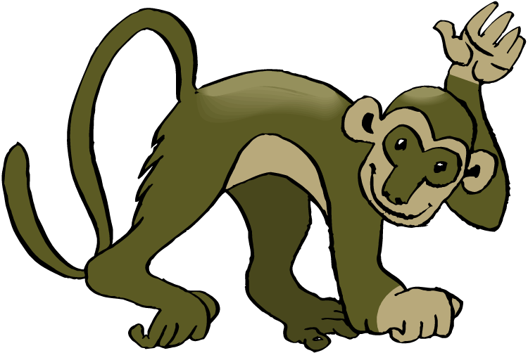 Spider Monkey Pictures Free.