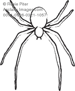 spider outline clipart & stock photography.