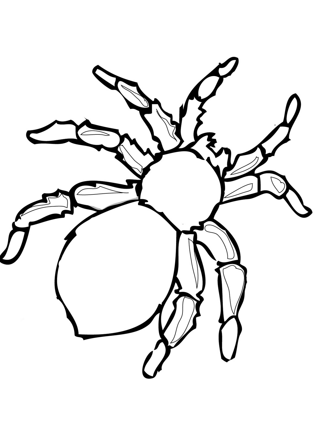 Free Spider Web Outline, Download Free Clip Art, Free Clip.