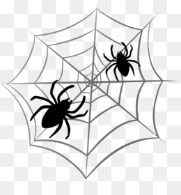 Spiders PNG and Spiders Transparent Clipart Free Download..