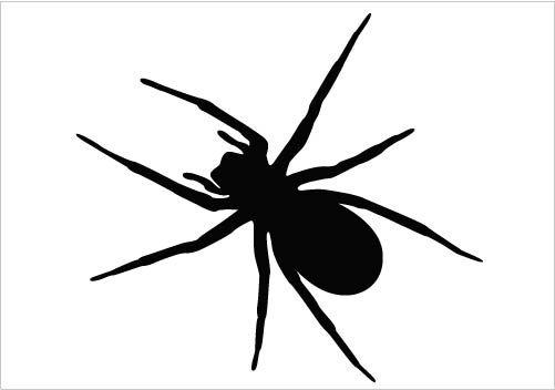 Spider Vector.