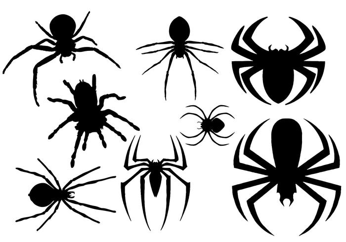 Free Spider Silhouette Vector.