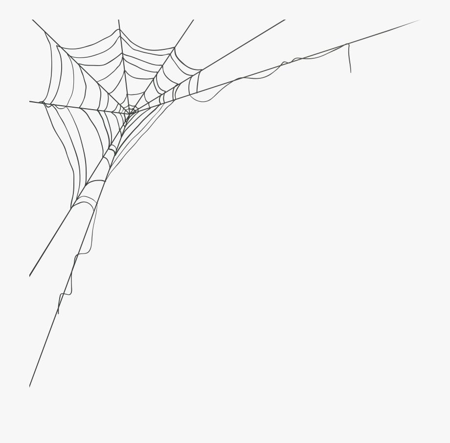 Spider Web Corner Png #709190.