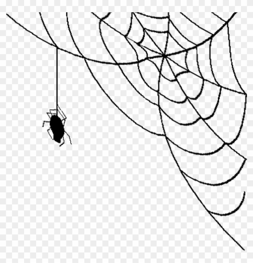 Spider Web Transparent Background, HD Png Download (#62615.