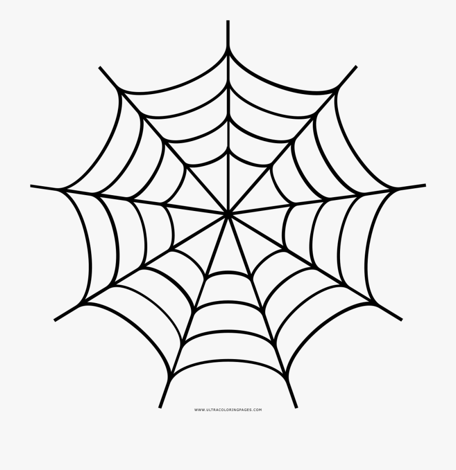 Spider Web Drawing Transprent.