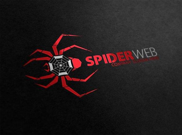 Spider Web Logo Template.