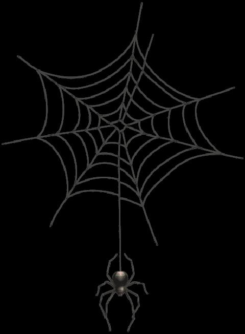 101 Spider Web Png Transparent Background 2020 [Free Download].