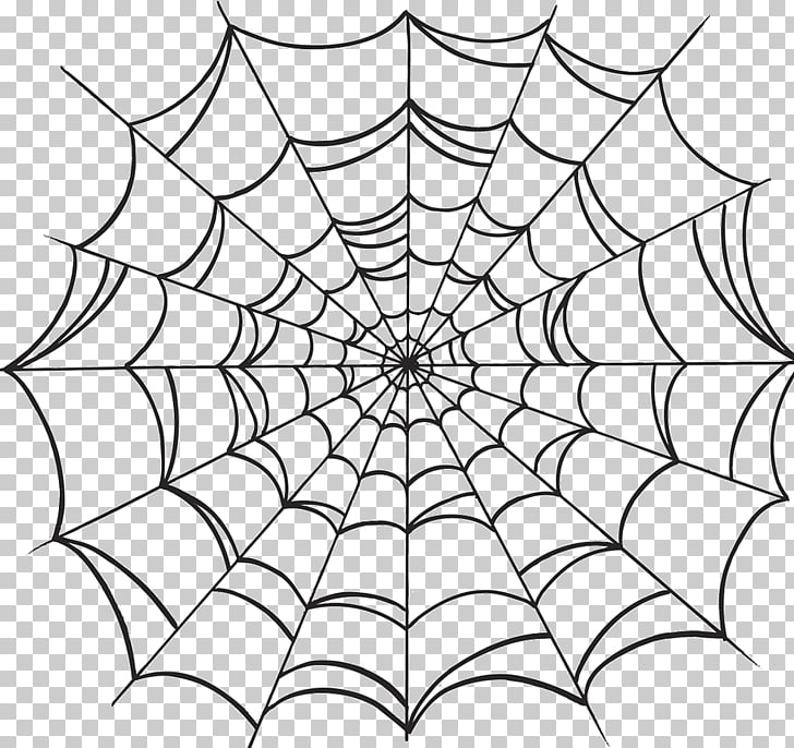 Spider web Drawing, spider PNG clipart.